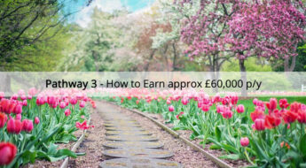 Pathway 3 - How to earn £60k per year with Avon